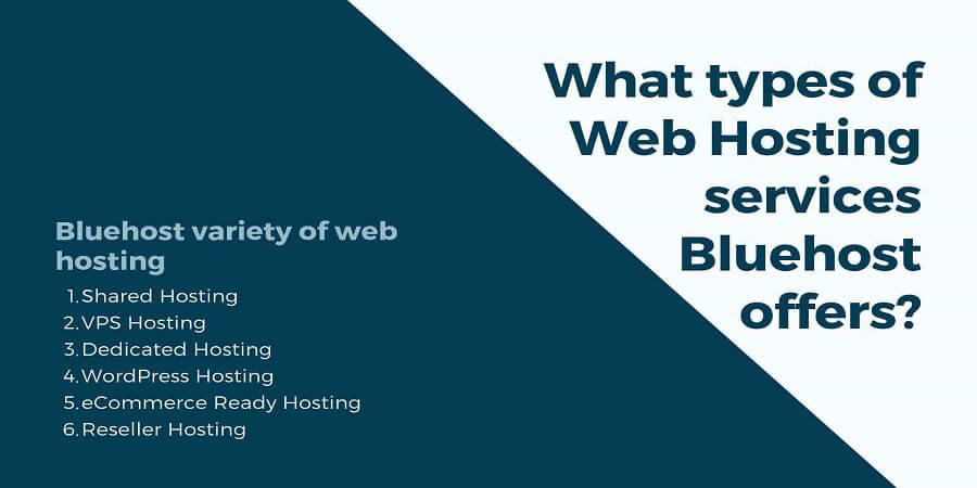 What types of Web Hosting