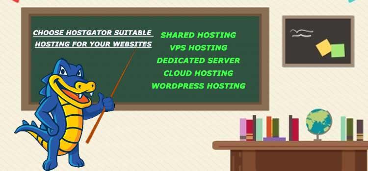 HostGator Web Hosting Types