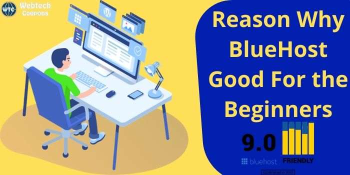 Why Bluehost Good For Beginners