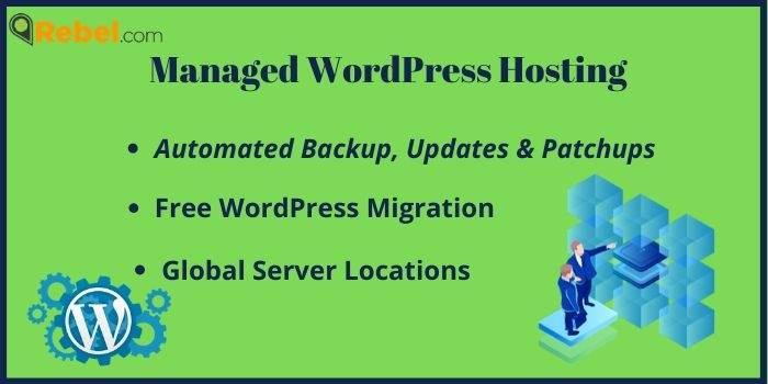 Rebel Managed WordPress hosting