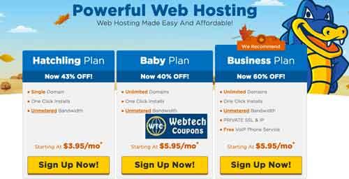 Hostgator Shared Web Hosting Reviews & Packages in Detail.