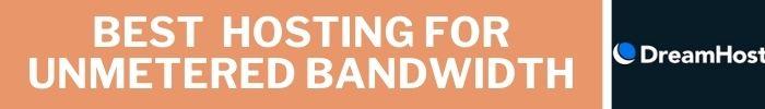 Best Hosting for unmetered bandwidth